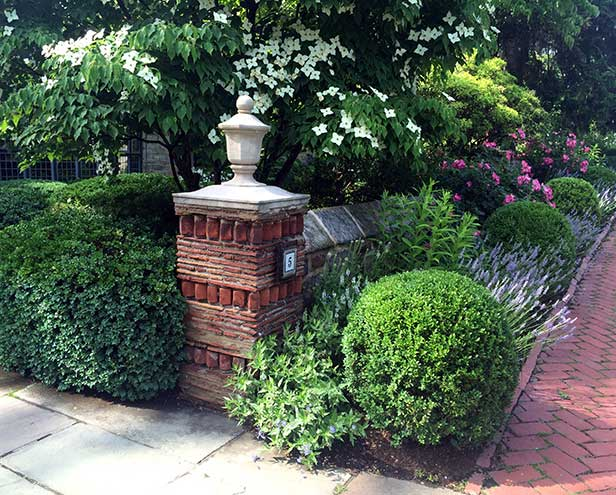 360b1c5391e5 home - Lilac Garden Design