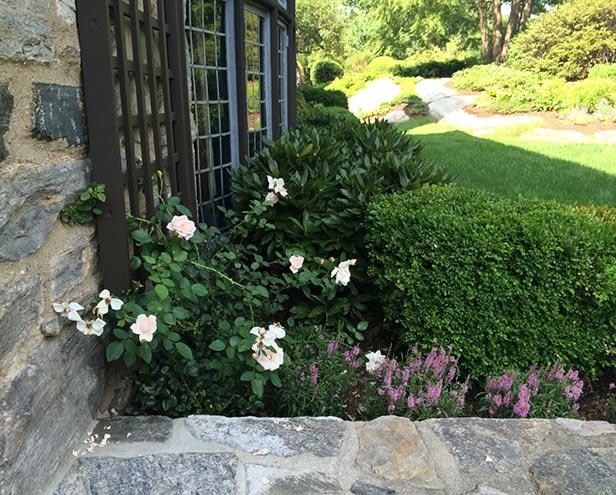 Bronxville Garden