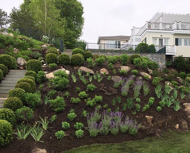 Rye Garden